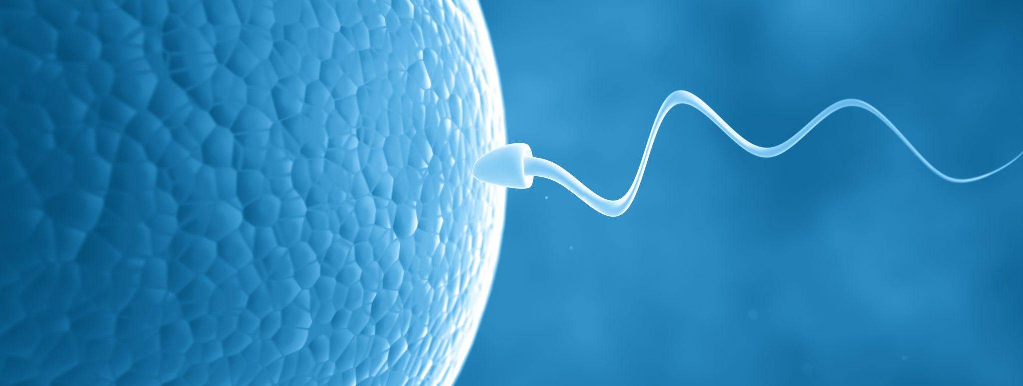infertilidad-1-tratamiento