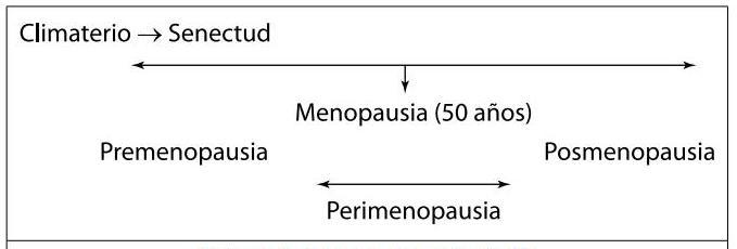 ¿Qué es la Menopausia, la Perimenopausia y el Climaterio?