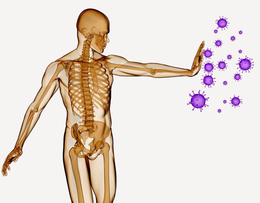 Fortalece tu sistema inmune desde la cocina